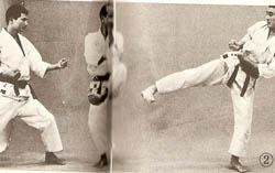 Karate-2 (1)