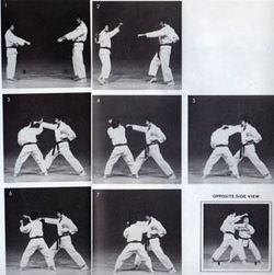 Sparring Problem-Small