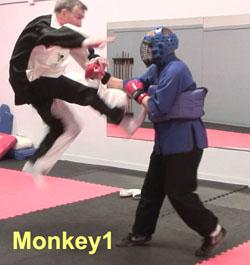 Ken-Gullette-Monkey-Kicks-1-2