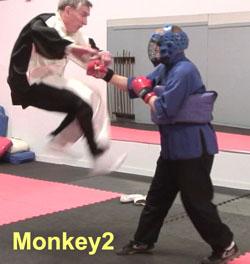 Ken-Gullette-Monkey-Kicks-2-2