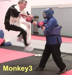 Ken-Gullette-Monkey-Kicks-3-2