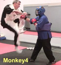 Ken-Gullette-Monkey-Kicks-4-2
