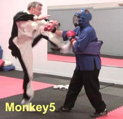 Ken-Gullette-Monkey-Kicks-5-2
