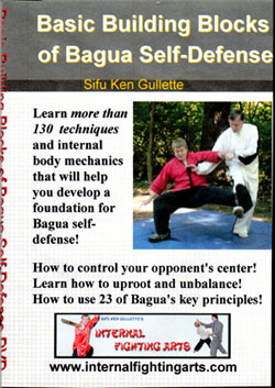 Bagua-Self-Defense-Front-250