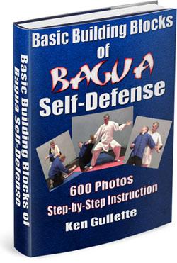 Bagua-Bldg-Blocks-Cover-3D-250