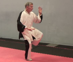 Chen Taiji Stepping